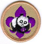 Boy Scout World Conservation Award Patch
