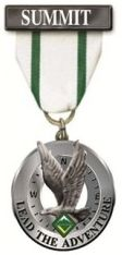 Summit Award medal